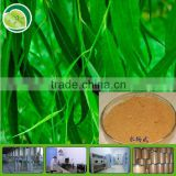 Yuensun white willow bark extract salicin