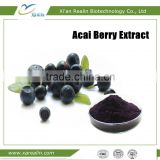 Bulk Supply Spray Dried Fruit Powder Freeze Dry Acai berry Powder powerful Antioxidant powder