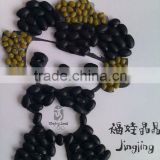 Black Kidney Bean/black turtle bean/black bean/small black bean( 2011 crop, hps, heilongjiang origin)