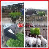 commercial sprout equipment /animal hydroponic fodder making machine/ pasture sprout growing equipment with fodder corn tray
