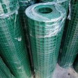 PVC Coated Wire Mesh /Welded Mesh