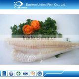 Seafood Wholesale frozen hake fillets