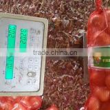 2015 Chinese fresh yellow onion price