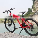 Rainbow-2014 New model pedelec sport style MTB li ion battery stealth bomber electric bike
