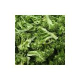 Health Cheap Freeze Dried Broccoli Florets Camping Food Emergency Food Dried Vegetables Freeze Dried Food