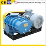 DSR125 Small noise and high efficiency roots blower made in China