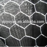 4ft x 50ft PVC coated Hexagonal Wire Mesh Netting