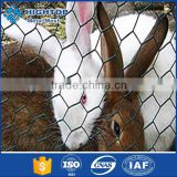 PVC coated pvc coated hexagonal wire mesh nettingrust proof hexagonal wire mesh for wholesales
