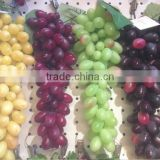 Artificial Green & Purple Grape Cluster Soft Plastic Burgundy Bunch Simulation Grapes Fruit Home Decoration