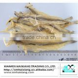 Wholesale dried bombay duck fish supplier