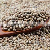 Hemp Seeds For Bird Feeds