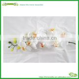 plastic orchid flower factory artificial orchid flower
