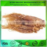 Korean red ginseng root whole root / slice / powder / extract