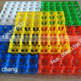 30 holes plastic egg tray for packing and transportation 30*30*5 cm plastic egg tray (Lydia: 008615965977837)