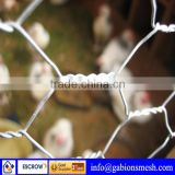 Hexagonal galvanized chicken wire mesh,hexagonal wire mesh cage,big coil galvanized wire hexagonal wire mesh with low price