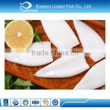 chinese sea frozen frozen and good quality china squid tubes
