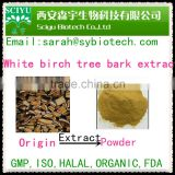 Birch tree Bark Extract 95% Betulin