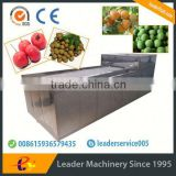 Leader whole sale plum pitting machine with Skype:leaderservice005