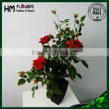 artificial flower, 50cm artificial rose bonsai, potted rose