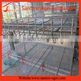 Hot-sale layer quail cages for salewith low price