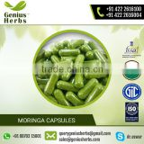 Best Herbal Product Moringa Capsules for Sale