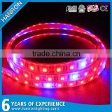Epistar SMD2835 leds LED rope plant grow light strip lighting Red : Blue 3:1 4:1 5:1 6:1 7:1 9:1 LED Grow Light strip 12V DC                                                                                                         Supplier's Choice