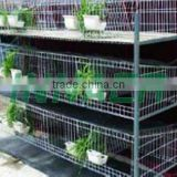 LAYER PIGEON CAGE (FACTORY)