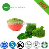 Natural Plant Extract organic broccoli powder