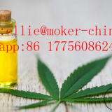 Hot selling high quality CAS 13956-29-1 Bulk CBD Oil with reasonable price and fast delivery !!     CBD Oil CAS No:13956-29-1