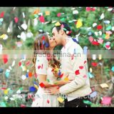 ~Wholesale~Colorful Biodegradable Valentine's Day Tissue Paper Confetti