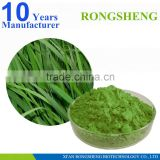 GMP factory barley grass juice powder,organic barley grass powder                                                                         Quality Choice