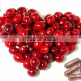 Anti-oxident Pure Natural Cranberry Fruit Extract Powder, Cranberry Extract Proanthocyanidins 5%-70%, Cranberry Juice Extract