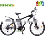 TOP Aluminium Alloy Unique Design 7-Speed Gear CE Certificate 36v 250w 20inch Lady Electric Bike Price