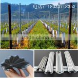 1.8m Height hot dipped galvanized vine plants grape post