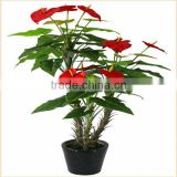 fake flower plant wholesale bonsai plants plastic anthuriums plants for sale