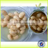 Canned White Kidney Beans In Brine/Canned White Kidney Beans/400g canned red beans export