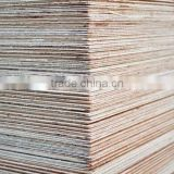E1 Glue Poplar Core Melamine Plywood for furniture, Semi-glossy Melamine Faced Plywood Sheet