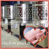 Commercial Automatic Poultry Plucker in China / chicken plucker