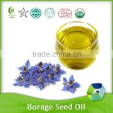 Organic Borage Seed Extract, Borage Seed Extract powder, Borage Seed oil