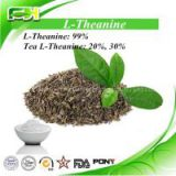 Green Tea Extract L-Theamine Powder 20%, 30%, 99%, L-Theanine