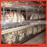 Excellent quality low price commercial chicken house