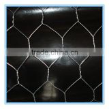 Use to building or chicken hexagonal wire mesh fencing netting