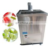 stainless steel ice popsicle machine with mould and holder