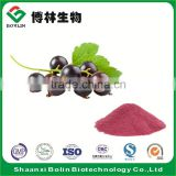 Water Soluble Organic Black Currant Fruit Flavor Powder Black Currant Fruit Juice Concentrate Powder