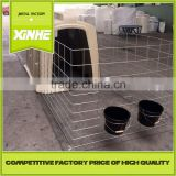 Cheap and fine House and open-air cage for calfs / Greenhouse Poultry Equipment Calf Hutch
