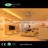Best quality hot sell outdoor led strip light Mufue LED strip of factory