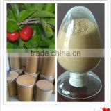 Organic Acerola cherry fruit Extract Vitamin C Also Named As Malpighia emarginata Extract