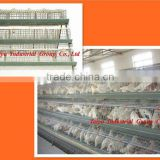 TAIYU-3 3 tier-A type egg laying chicken cage (Nigerian /Lagos office,For birds in sales)