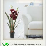 64cm Artificial Orchid in Plastic Pot