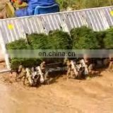 Hot selling rice planter in Malaysia, good performance rice paddy planter,mini rice transplanter for sale